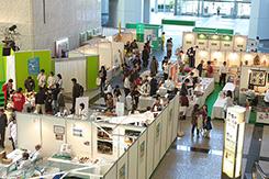 中央区へそ展2011